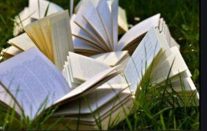Wording in novels